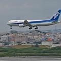 Photos: 沖縄_7D2_8794_l