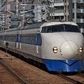 Photos: 福岡博多_IMG_5498_l
