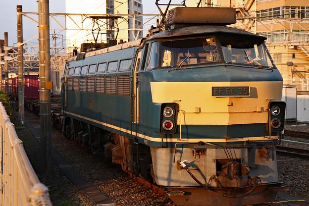 Photos: 岐阜_IMG_7297_l
