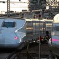 Photos: 大阪_IMG_7449_l