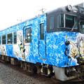 Photos: 鳥取境港_P1060185_l