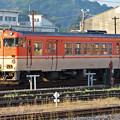 Photos: 鳥取米子_7D2_6282_l
