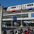 Photos: 沖縄_7D2_3228_l