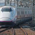 Photos: 埼玉大宮_7D2_7674_l