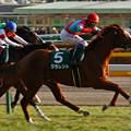 Photos: 東京_IMG_0880_l