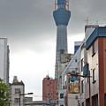 東京_IMG_5756_l