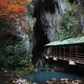 Photos: 山口_IMG_8502_l