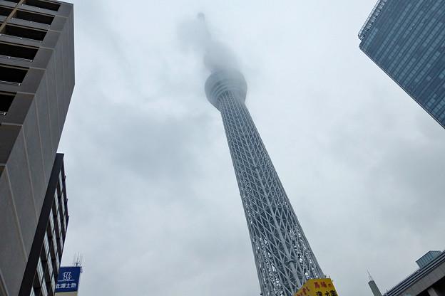 東京_P1040846_l