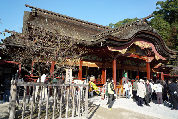 Photos: 福岡太宰府_P1030593_l