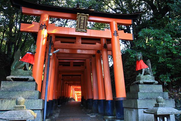 京都_IMG_7547_l