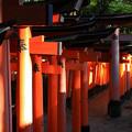 Photos: 京都_IMG_7551_l