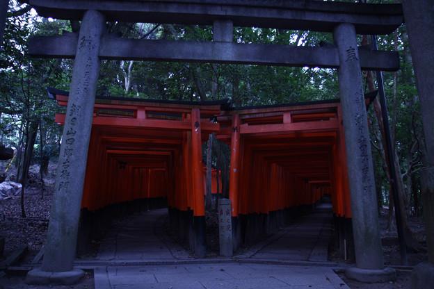 京都_IMG_7638_l
