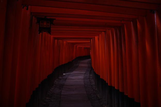 京都_IMG_7693_l
