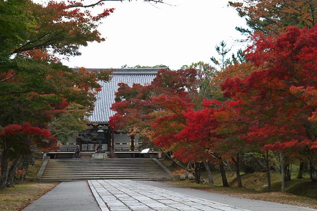 Photos: 京都_IMG_9494_l