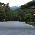 Photos: 伊勢_7D2_4864_l2