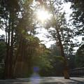 Photos: 伊勢_7D2_0478_l