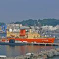 P1130960_l_横須賀