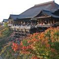 Photos: 京都_IMG_9776_l