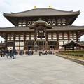 Photos: 奈良_IMG_9965_l