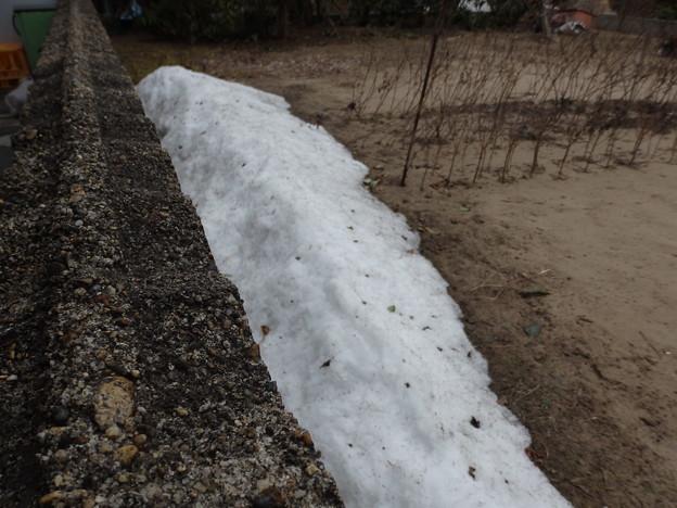 写真: お隣の畑に捨てさせてもらった雪