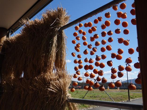 干し柿と稲と