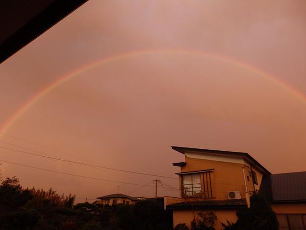 大きな虹が出たよ