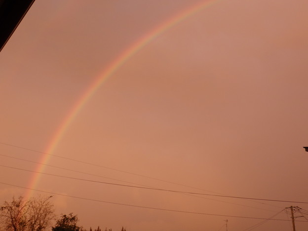 けっこう長く虹が出ていた