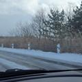 雪の積もった道路脇