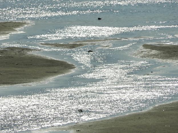 干潟の流れ