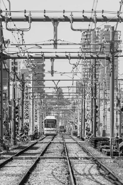 300325-三ノ輪橋6