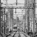 Photos: 300325-三ノ輪橋6