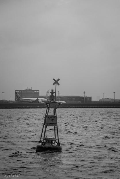 300414-東京湾6
