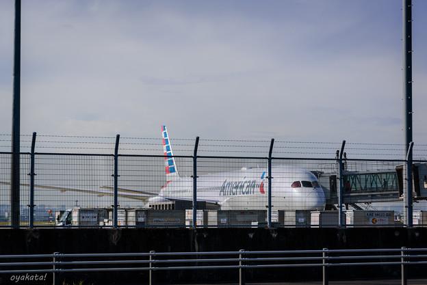 300512-羽田空港外周2