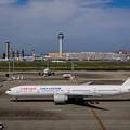 300512-羽田空港2