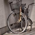 Photos: G300714-根津3