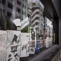 Photos: G300714-根津7
