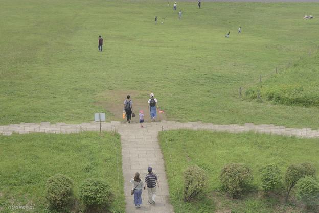 300716-葛西臨海公園2