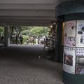 写真: G300908-神楽坂5