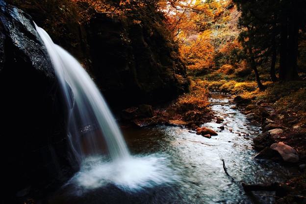 ~里山の秋は深く静かに移り行く~