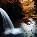 Photos: ~里山の秋は深く静かに移り行く~