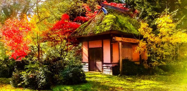 ~古き良き日本の原風景~秋色