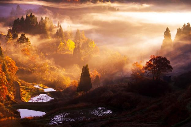 ~秋の棚田を彩る光と影の競演~