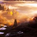 Photos: ~秋の棚田を彩る光と影の競演~