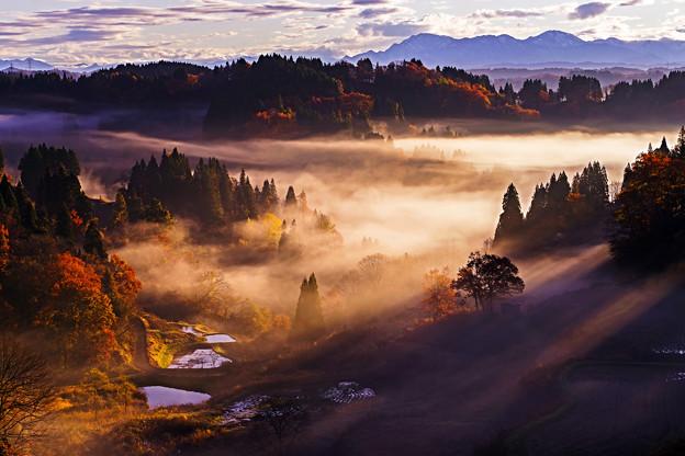 ~秋の棚田を彩る光と影の競演~神々しくも至福の瞬間