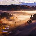 Photos: ~秋の棚田を彩る光と影の競演~神々しくも至福の瞬間