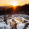 Photos: ~冬の棚田の夜明け~