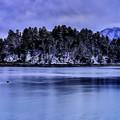 Photos: ~静寂湖畔~冬曇りの静けさの中で…。