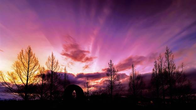 Photos: ~冬雲躍動~