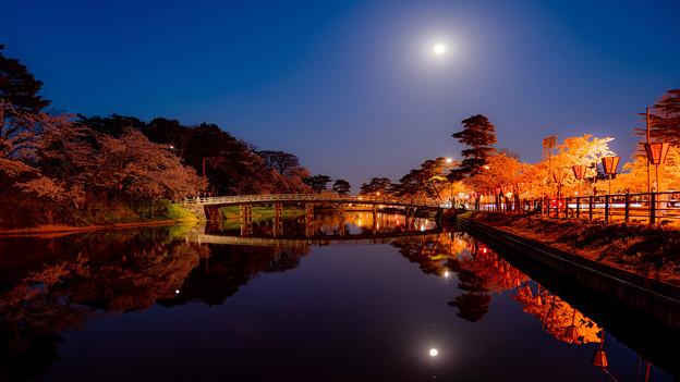 ~月夜と夜桜に誘われて~