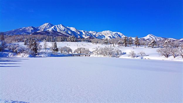 ~厳冬雪景~冬晴れの朝
